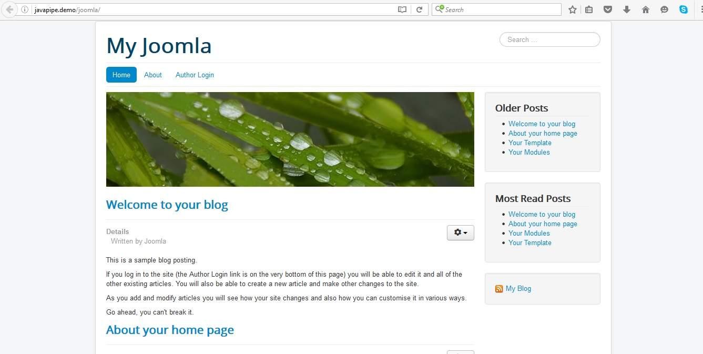 Joomla default setup