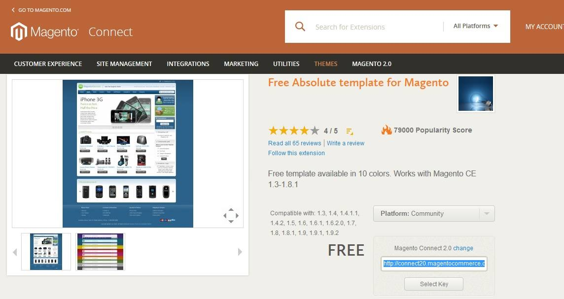 Chaning the Magento store theme