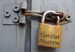 Tomcat Realm example