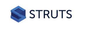Struts Java Framework Logo